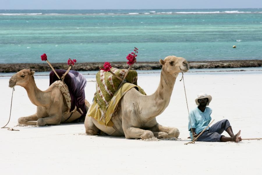 Kenya incontri luoghi di interesse online dating Australia paese